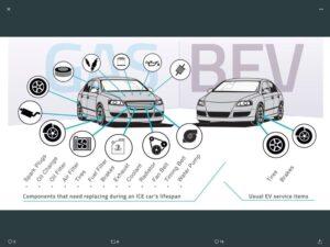 Tesla Model S 2020, Cookie - EV Owner Review
