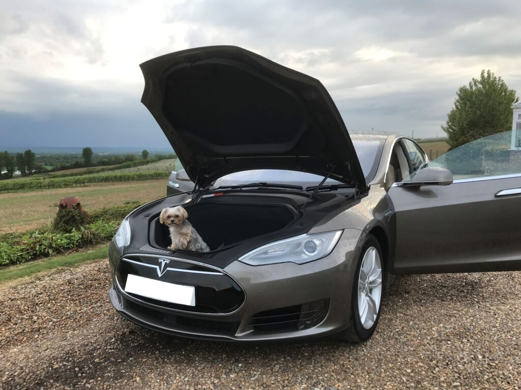 Tesla Model S 90 D 2015, William - EV Owner Review