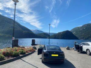 Tesla Model 3 Long Range 75kWh 2019, Clive - EV Owner Review